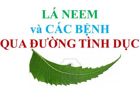 LÁ NEEM và CÁC BỆNH QUA ĐƯỜNG TÌNH DỤC
