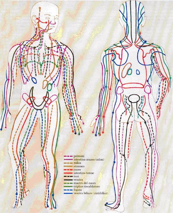 Âm dương và hệ thống kinh huyệt trong quan niệm đông y