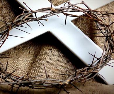 Thần-học Kinh-Thánh Veritas (THKTV từ 1 đến 15)