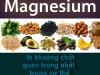 Magnesium (magiê) là khoáng chất quan trọng nhất  trong cơ thể