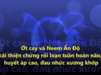 Ớt cay và Neem Ấn độ cải thiện chứng huyết áp cao, rối loạn tuần hoàn máu não, đau nhức xương khớp
