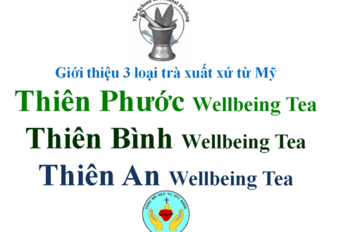 Giới thiệu 3 loại trà: THIÊN PHƯỚC Wellbeing Tea, THIÊN BÌNH wt, THIÊN AN wt