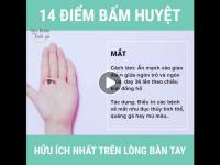 Day ấn 14 huyệt đạo trên bàn tay chữa khỏi bách bệnh